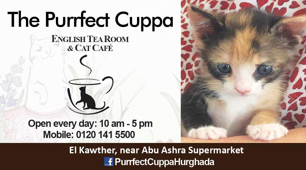Purrfectcuppa April2021