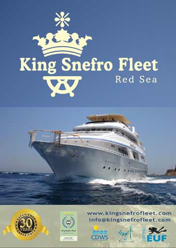 King Snefro Fleet